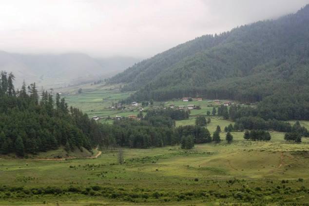 Nature walk in scenic Phobjika Valley