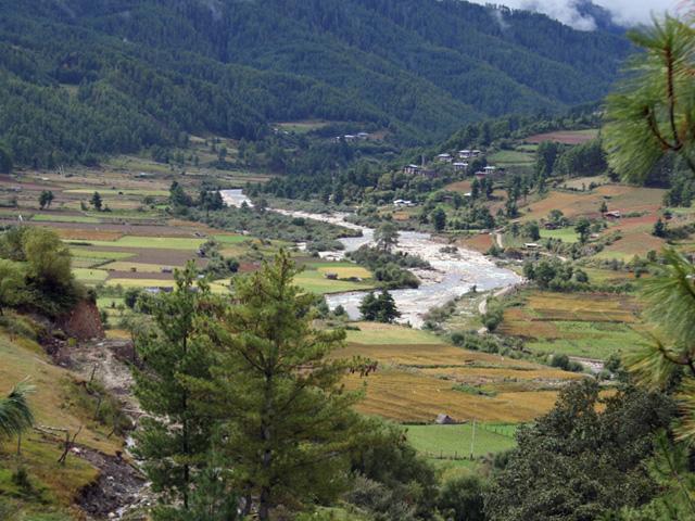 Tang Valley