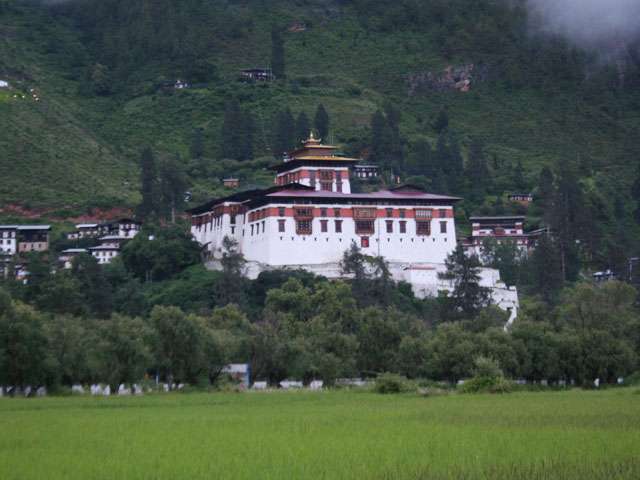 Rinphung Dzong with green fields in summer