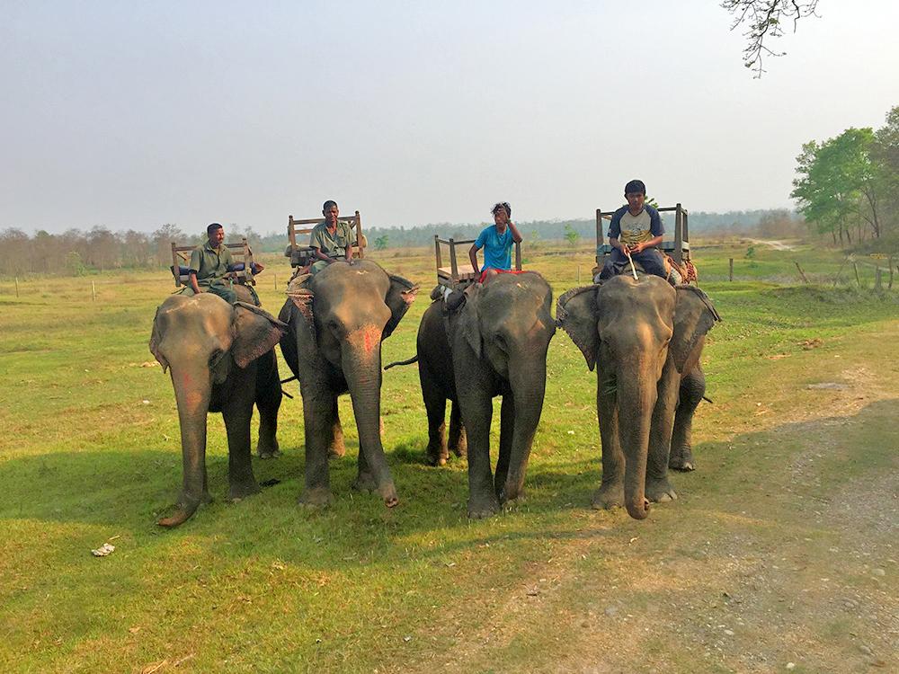 Chitwan national Park River View