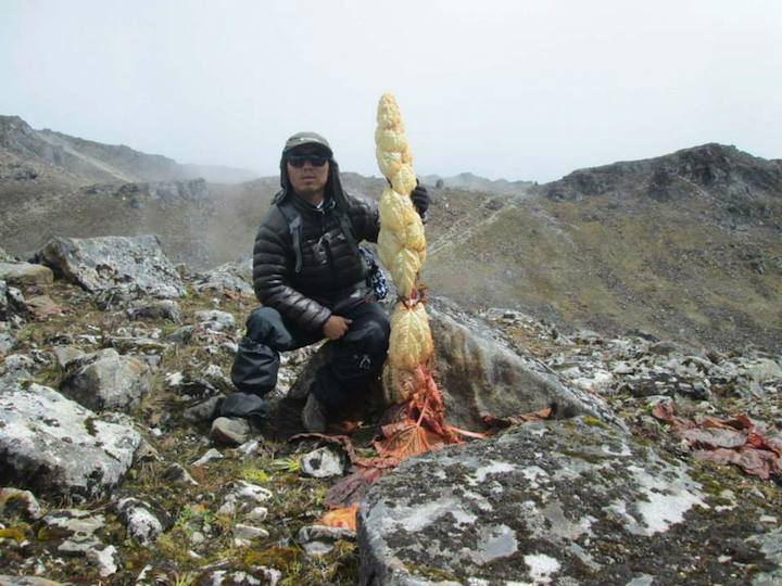 Pema Namgyal (Guide) whilst on Snowman Trek, Oct, 2014 Courtesy Kirill & Olga