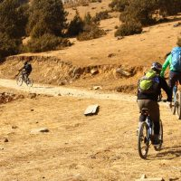 Off Road biking in Phobjika region